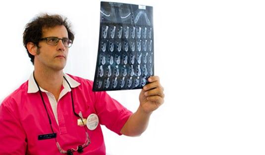 Jorge Ferrus periodoncista
