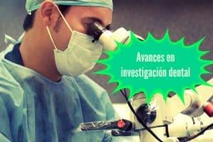 celulas madre investigacion