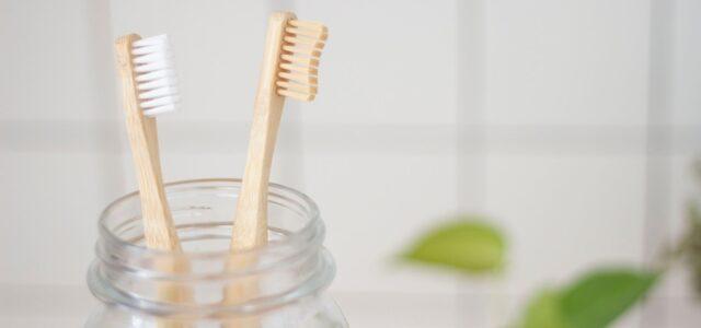 Cepillos de dientes naturales de bambú